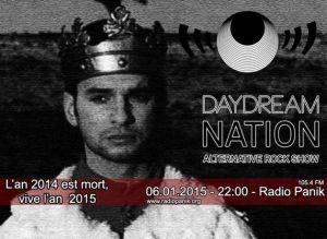 daydream nation et l'an de grâce 2014